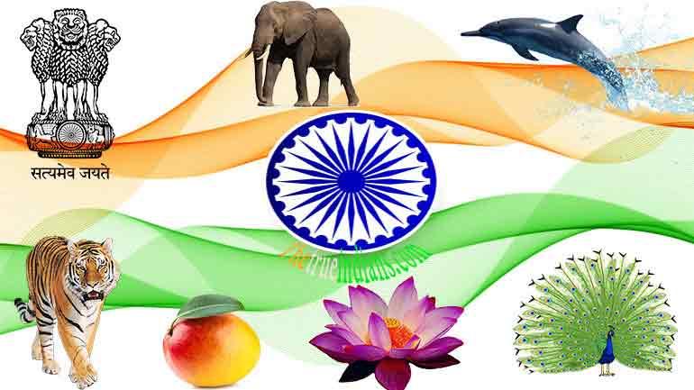 national-symbols-of-india