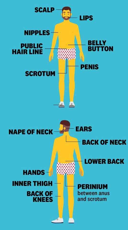 7-erogenous-zones-for-males
